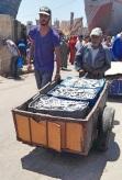 """Essaouira - Mercato del pesce: """"Ora non è il momento di pensare a quello che non hai. Pensa a quello che puoi fare con quello che hai"""". (Ernest Hemingway Il vecchio e il mare)."""